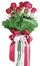 A Beautiful Bouquet of 10 Roses