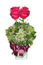 Congratulations with Roses